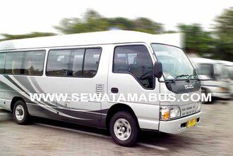 minibus elf